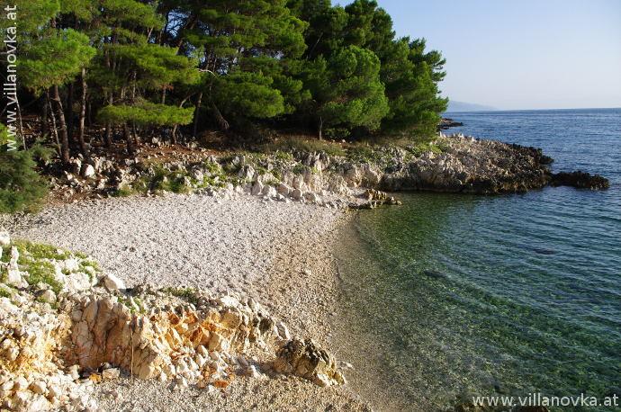 Strand Istrien Ravni skvaranska kiefernbucht
