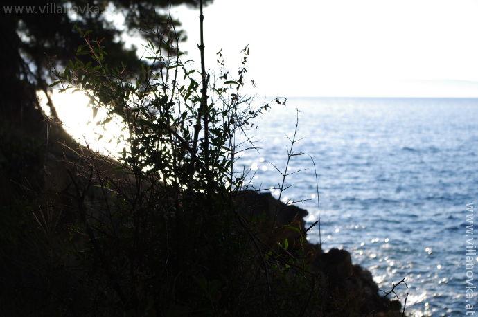 Strand Istrien Ravni kod barake bunker